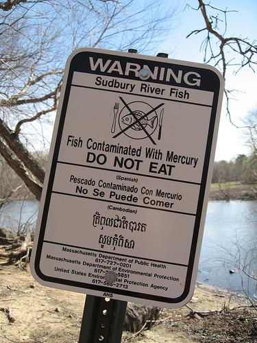 A sign in Massachusetts warns people not to eat the fish because of mercury.