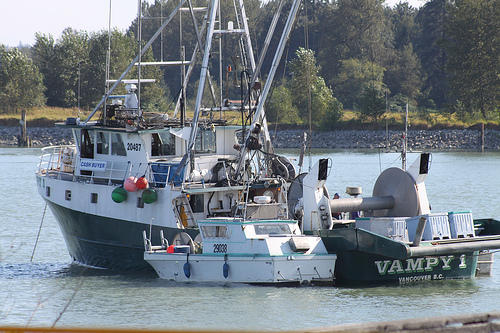 A New Hampshire fisherman is fighting federal regulations that require fishermen to pay for at-sea monitors.