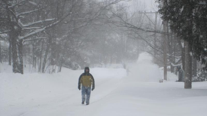 Many sidewalks remain snow covered, but with so little traffic, the street isn't too dangerous for pedestrians.