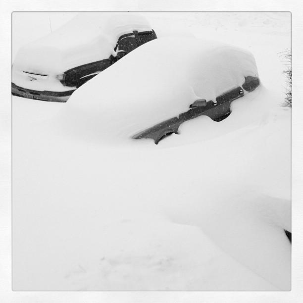 Cars buried under snow in Pembroke