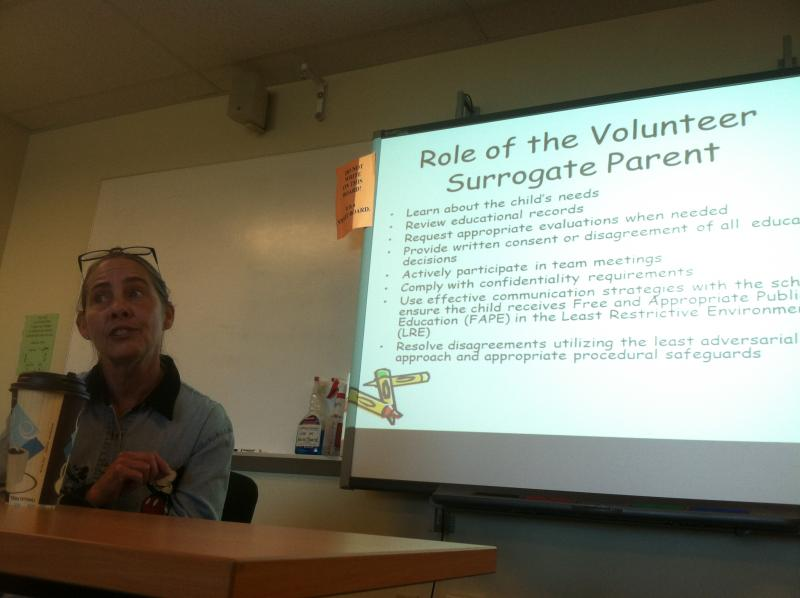 Linda Potter conducts a training session for the educational surrogate program.