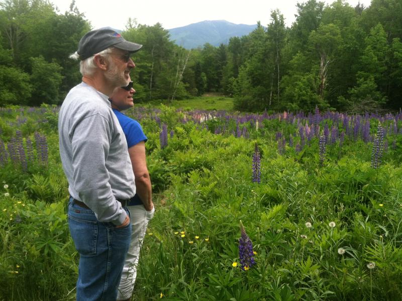 Steve Majeski and Ruth Martz of Sanbornton celebrated their 35th anniversary by going to the Fields of Lupine Festival in Sugar Hill.