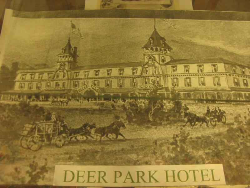 Promotion of the Deer Park Hotel in Woodstock