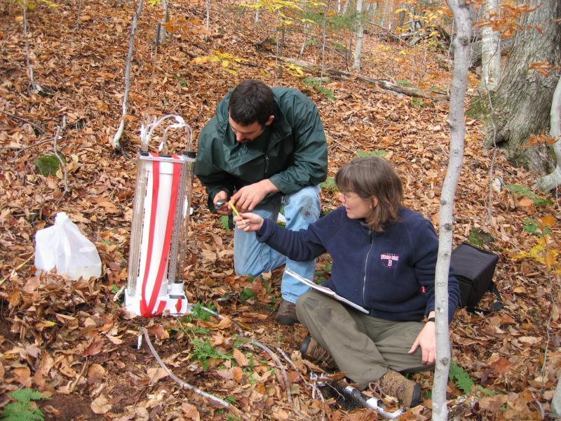 Researchers conducting experiments at the Hubbard Brook Experimental Forest