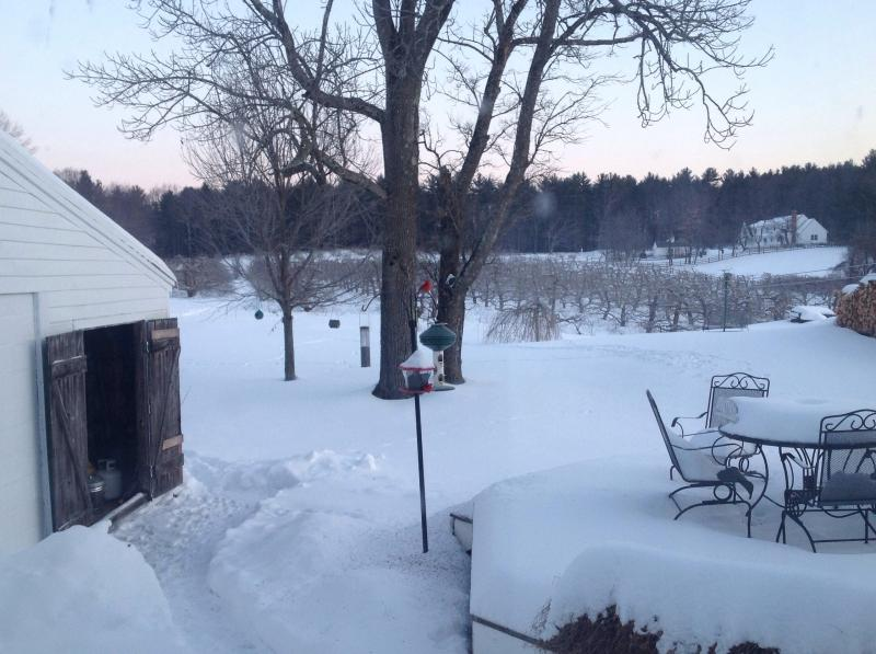 Snow Covered Patio Furniture at Sunset