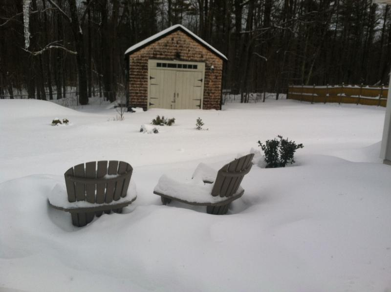 Snow Covered Adirondack Chairs
