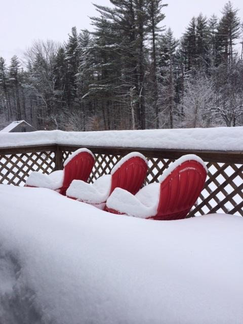 Sad, sad row of cheerful Snow Covered Patio Furniture