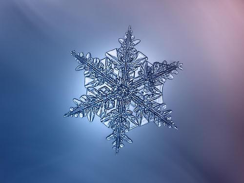 Snowflake Macro: Dark Star