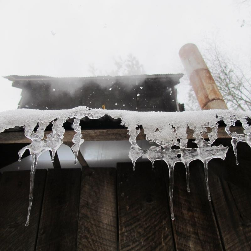 Snow falls outside Courser Farm's Sugar King's shack.