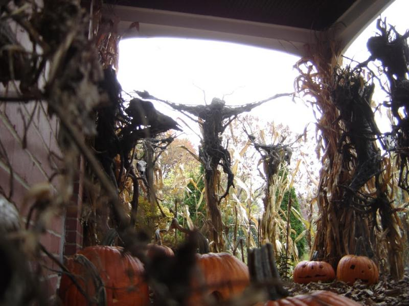 """The Scarecrow Catacomb"" based on PumpkinRot's work in the film Mr. Jones (2014)."
