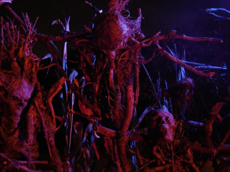 Scarecrows made by PumpkinRot for the movie Mr. Jones (2014).