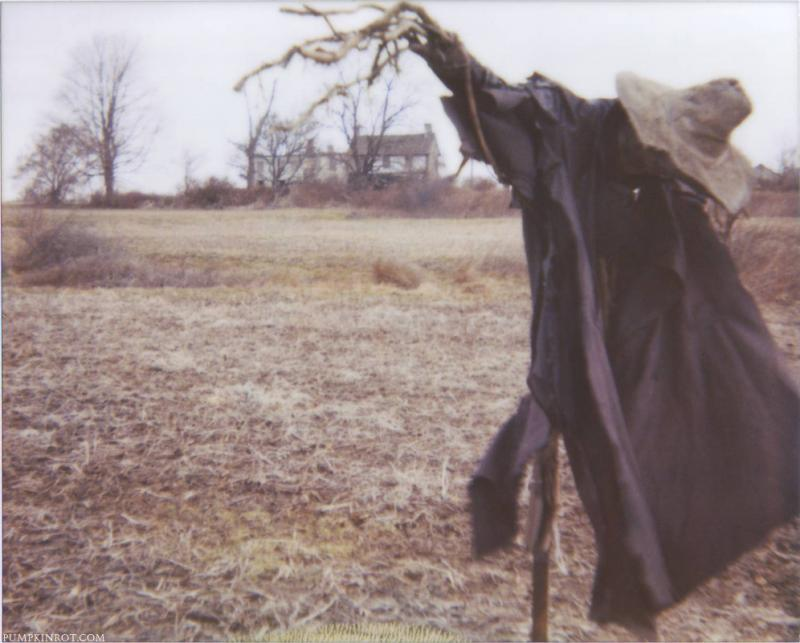"""Johnny Appleseed"" scarecrow on an abandoned farm in 2004. Made with paper mache, dried shrub roots and old clothing."