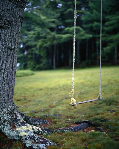 Swing by Fernald Cove, Mt. Desert Island, Maine