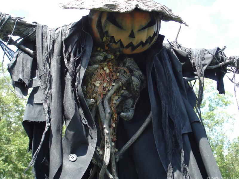 """Seeds"" scarecrow in a pumpkin field from 2010. Made with paper mache, clay, seeds, roots, branches."