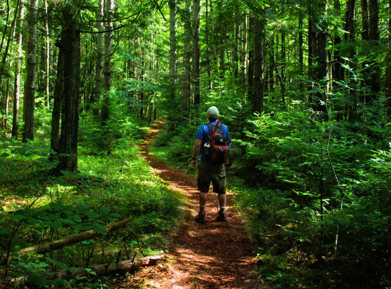 Magnificently Easy - 10 Family-Friendly Walks in N.H ...