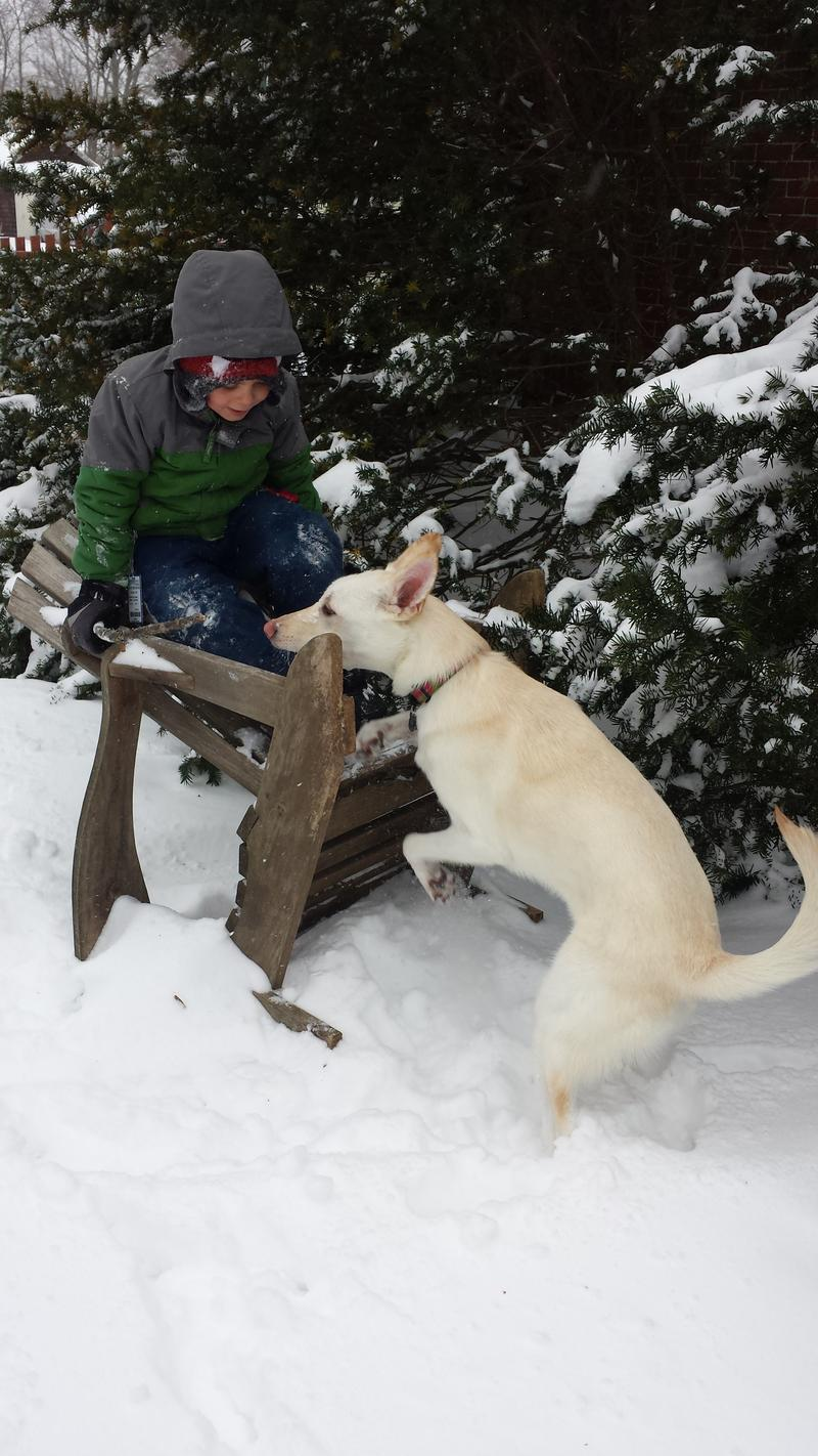Listener Alisa Druzba sent us this photo: This is my youngest son Harper and our Chinook Ushko. Taken in Concord at 12pm.