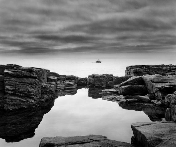 """Shoals - Rock Pool #1"""
