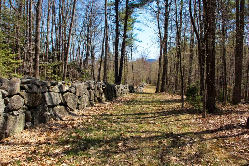 The only viewable section of the Great Wall is on Little Pond Road.  Most of it, like this section through the woods, is on private property.