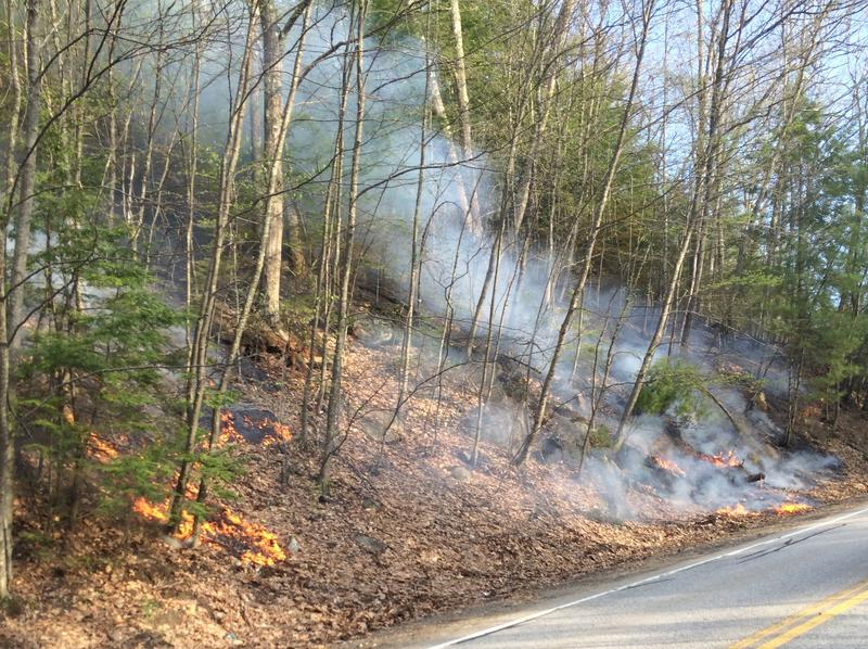 A fire burns near the Marjory Swope Park in Concord.