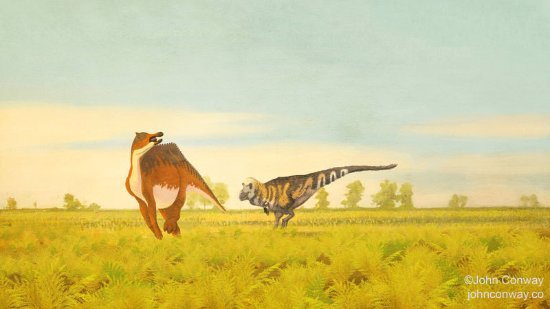 The duckbilled dinosaur Saurolophus angustirostris tries to get away from a very spritely Tarbosaurus bataar.