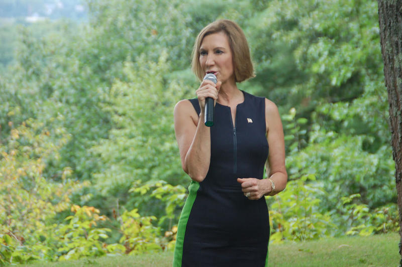 Carly Fiorina speaks at a house party event in Concord, August 23, 2015.