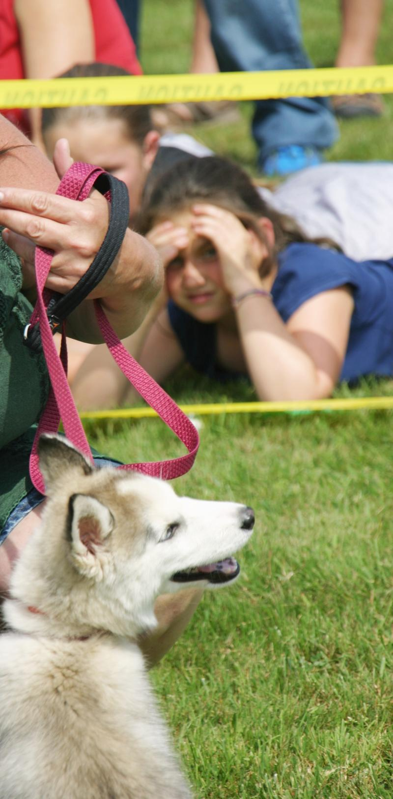 A dog show hosted by Habitat for Humanity was part of the festivities.