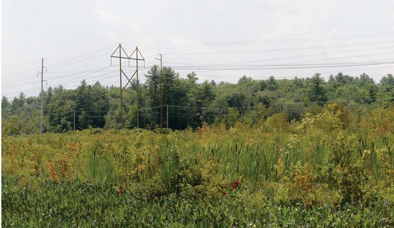 A photo simulation made by Eversource to show what the power line would look like if constructed.
