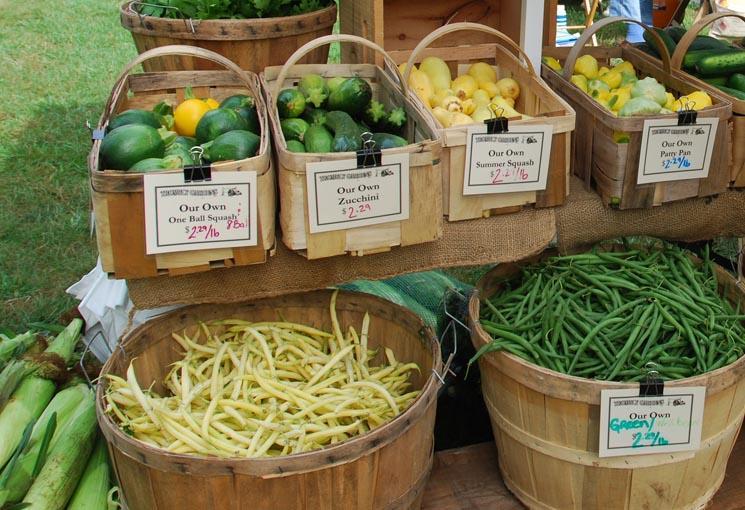 Bins at the New Boston Farmers Market