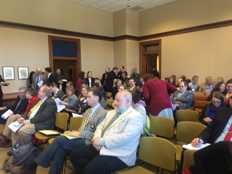 The room was packed as the Senate heard testimony Tuesday on whether to continue the state's Medicaid expansion program another two years.