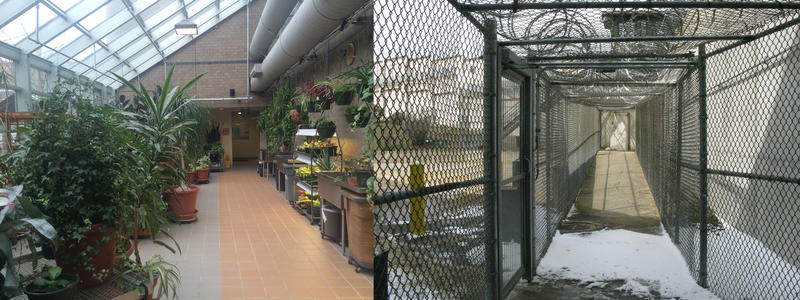 On the left shows the greenhouse which patients are greeted with before they are brought to their rooms meanwhile on the left shows the wing patients are brought through to get to their rooms.