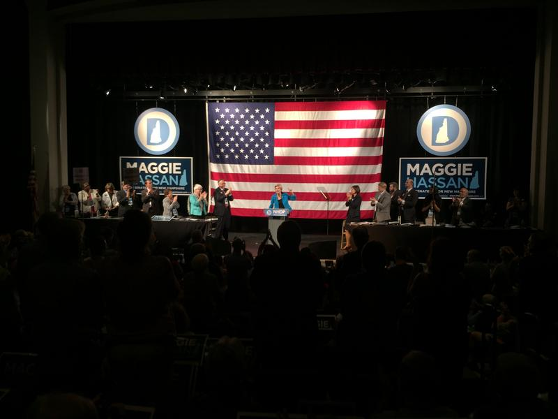 Sen. Elizabeth Warren, of Massachusetts, tried to fire up party activists at the New Hampshire Democrats' state convention this weekend.