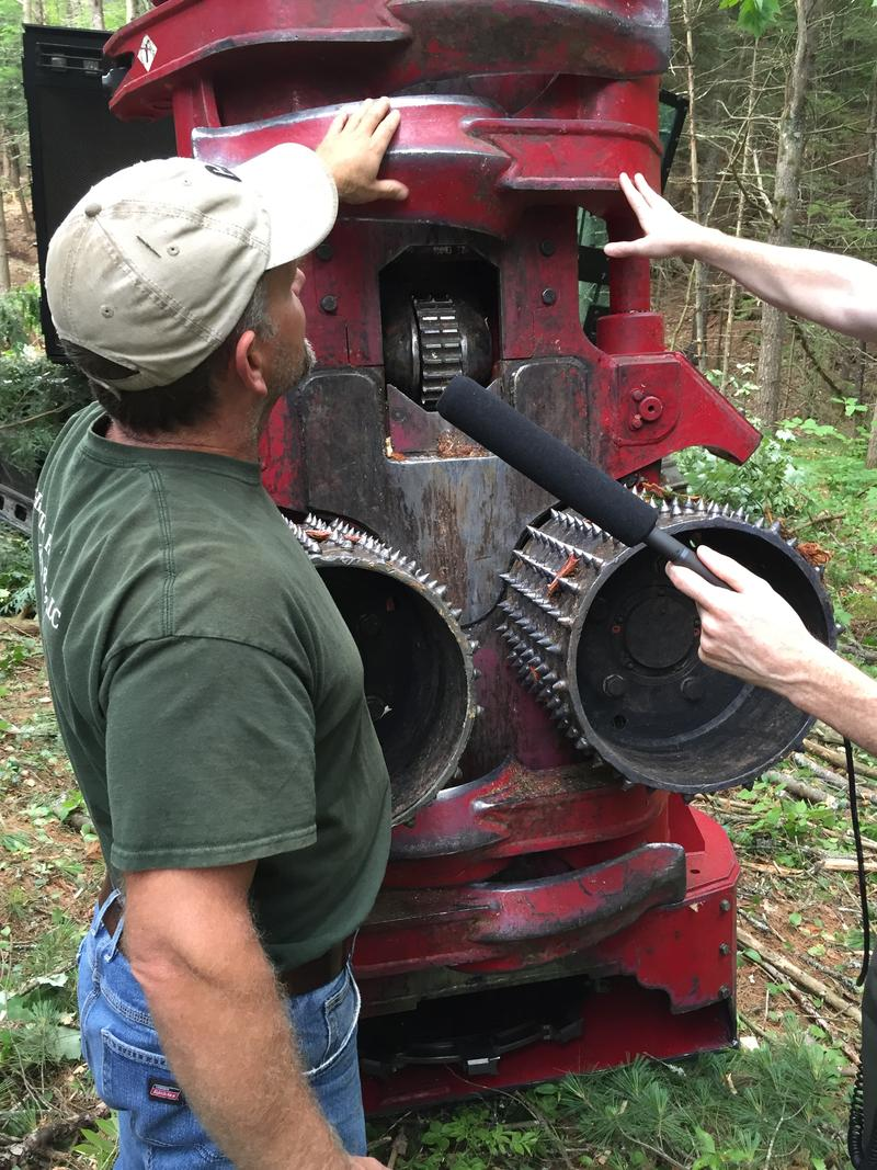 Logging Operator Todd Carmichael gives us a tour of the business end of the feller-buncher.