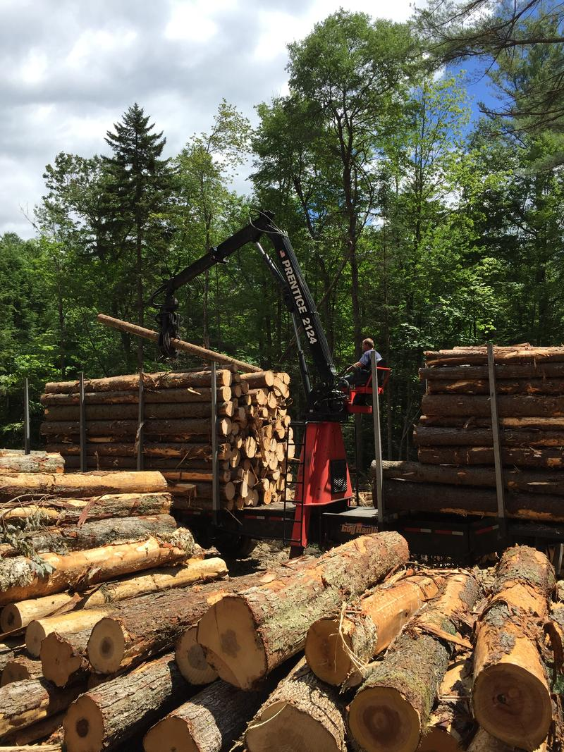 Logs get loaded up for transport to the mill.