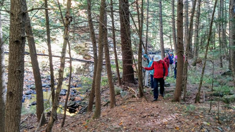 The Forest Society recently led guided tours of the property.
