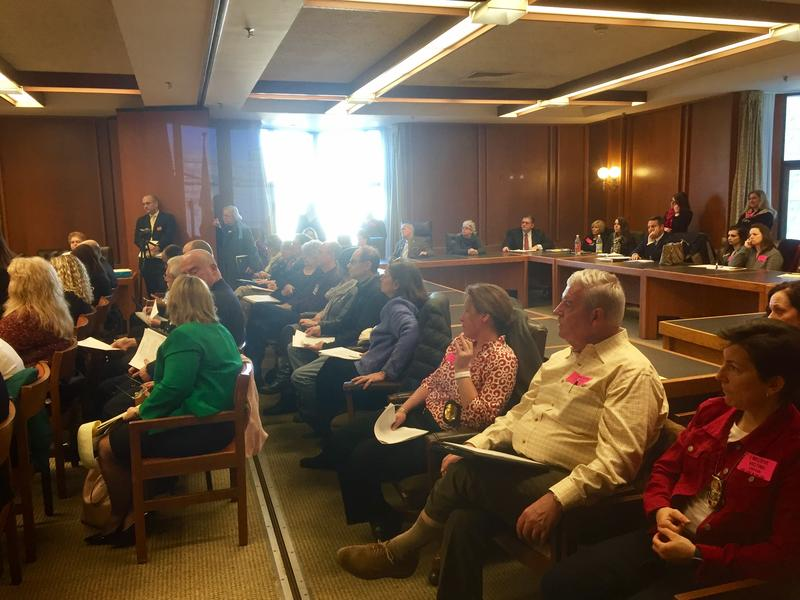 Protestors gathered at the State House Tuesday to oppose a bill they say would allow more sex offenders to avoid prosecution.