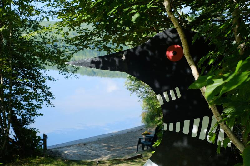 A giant loon stands guard at the beach on Michael Riese's property on Goose Pond in Canaan.