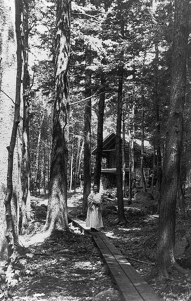 Taken around 1898, this shows Marian MacDowell in the woods near the log cabin studio at the colony.