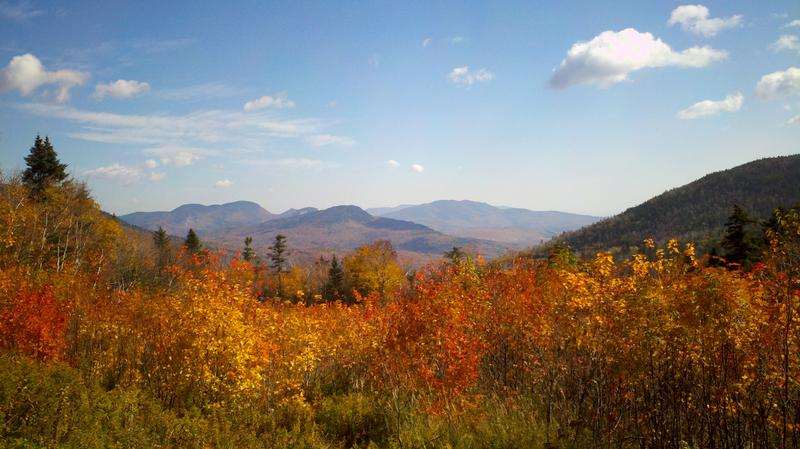 Paris Accord architect Dr. Edward Cameron says climate change will affect fall foliage, which will have an impact on local New Hampshire economies.