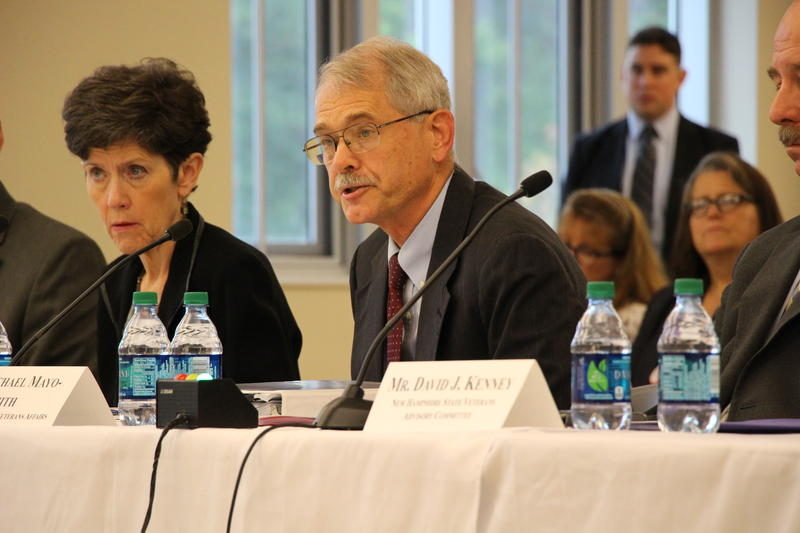 Dr. Michael Mayo-Smith, director of the VA New England Healthcare System, speaks at a congressional field hearing in September 2017.