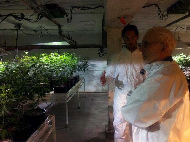 Marijuana tour w/Seattle City Council