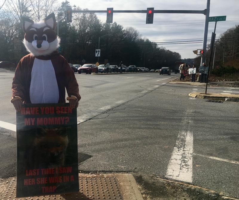 """It draws attention and people think it's cute, and they'll at least acknowledge the signs,"" one protestor, who declined to give his name, said of his decision to don a full-body fox costume for the demonstration."