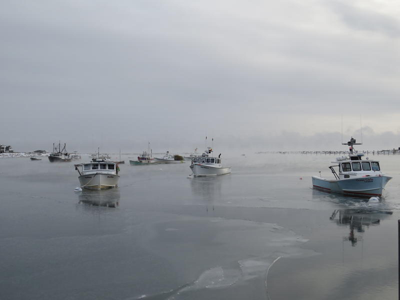 A thin layer of ice was on Rye Harbor Dec. 29.