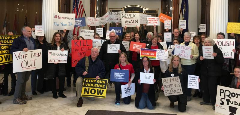 Protesters gather at the State House to take action against campus carry gun bill HB 1542