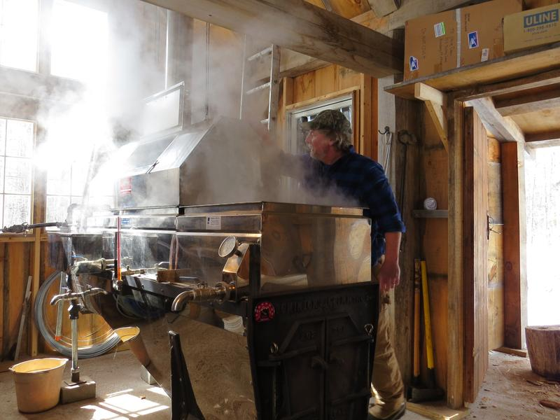 The old fashioned evaporator slowly cooks the sap over a wood fire.