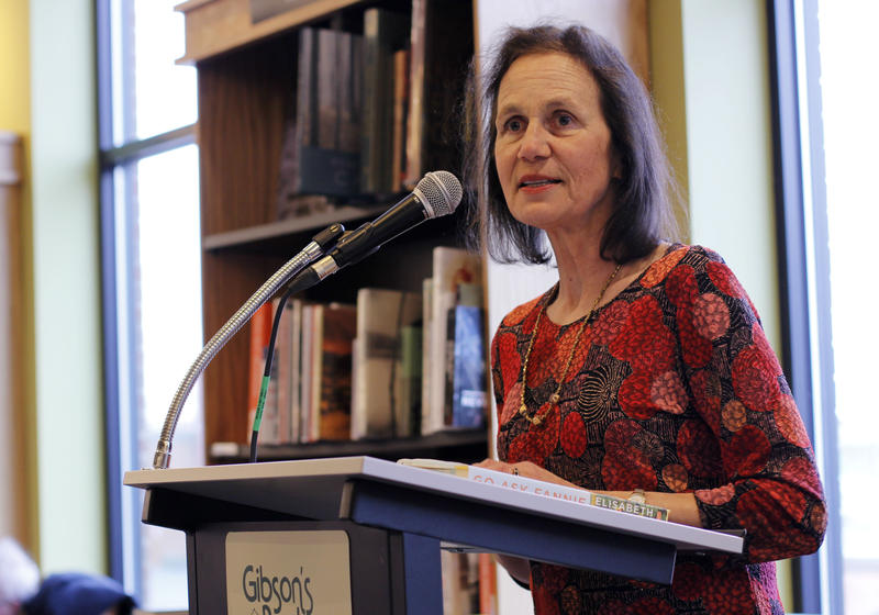 Elisabeth Hyde speaks about her new novel at Gibson's Bookstore in Concord, N.H.