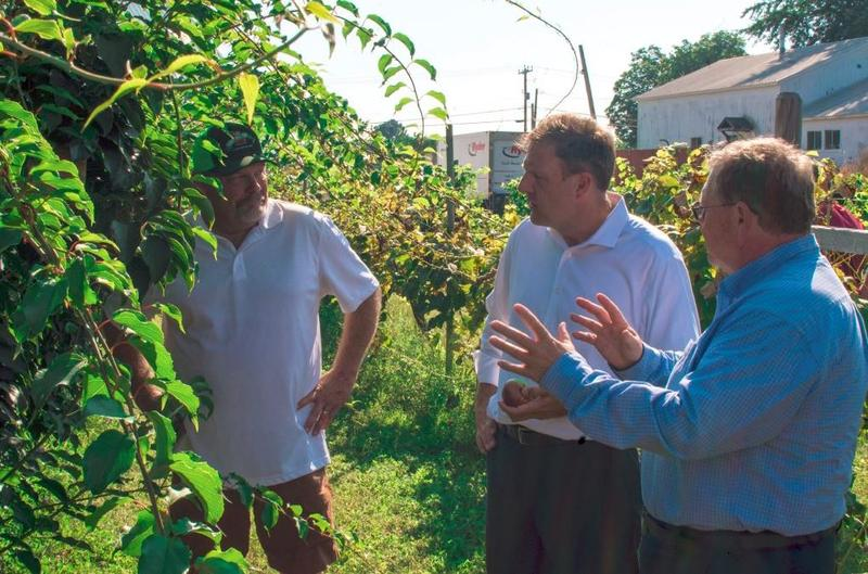As his would-be Democratic opponents fight it out in a primary race, Gov. Chris Sununu has enjoyed a relatively peaceful summer, including this recent visit to Sunnycrest Farm in Londonderry.