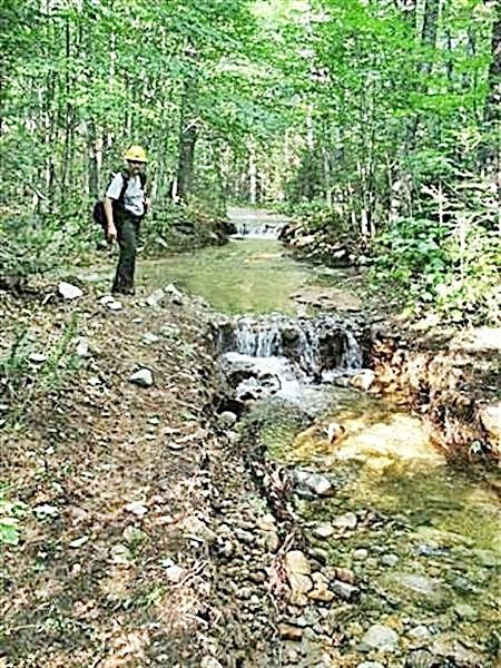Trails that were close to streams were most likely to be badly damaged.