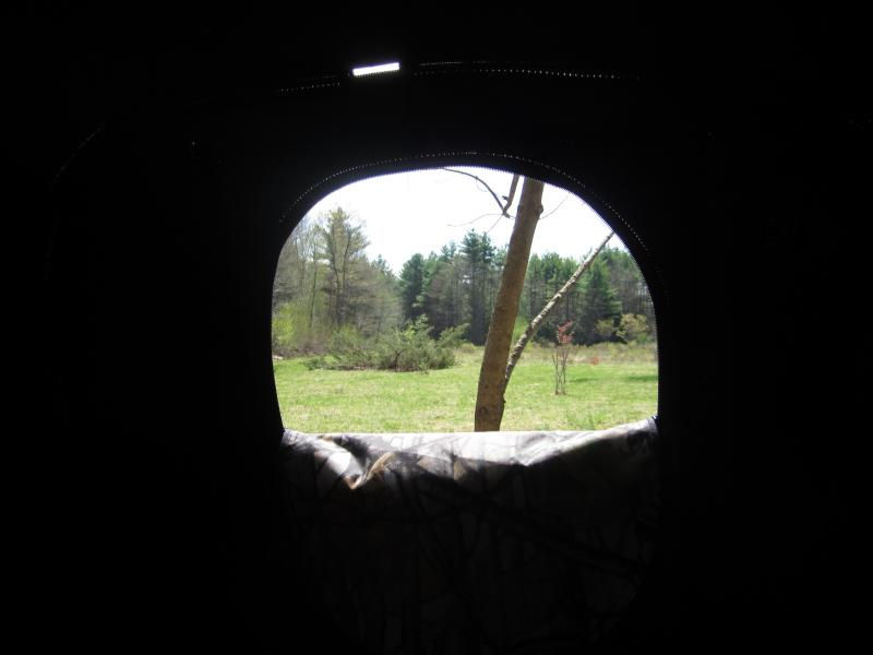 The view from inside Gagnon's turkey blind.