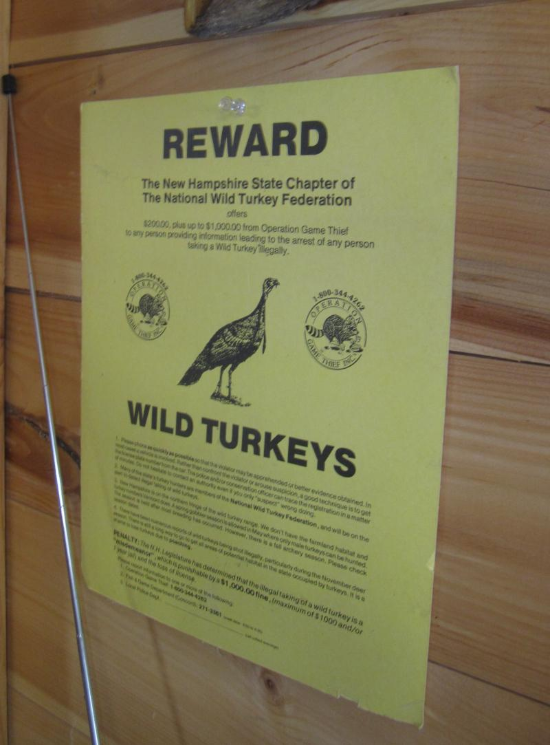 Gagnon was very involved with the turkey restoration project. His wall displays a poster offering a reward for turkey poachers, from the early days.