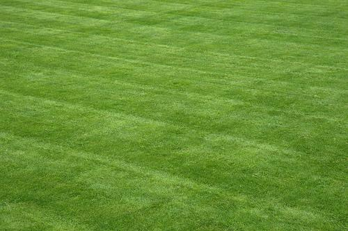 Fertilizer running of from immaculate lawns in the Great Bay watershed is in the cross-hairs of one Newmarket lawmaker.